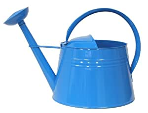 Hit 8085exr galvanized heavy gauge steel watering can 2 gallon blue patio lawn - Gallon metal watering can ...