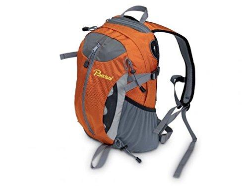 Bertoni, Zaino Laser 20 Daypack Grigio/Arancione, Colore: Grigio/Arancione