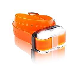 Dogtra EDGE 1 Mile Extra Collar Orange