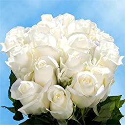 50 Fresh Cut White Roses for Valentine\'s Day | Tibet Roses | Fresh Flowers Express Delivery | The Perfect Valentine\'s Day Gift
