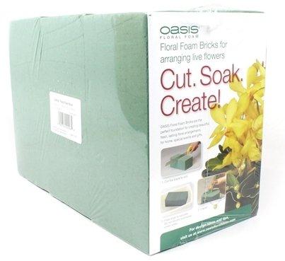 Oasis® Pack of 6 Standard Floral Foam Bricks (Florist Oasis compare prices)