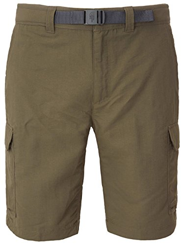 The North Face Paramount II Cargo Short - Men's New Taupe Green, 30/Reg Cargo Climbing Shorts