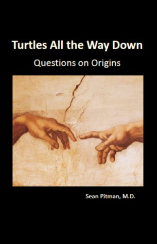 turtles all the way down a critique of infinitism and coherentism essay Infinitism is the view that knowledge may be justified by an ( foundationalism and coherentism ) justification is, so to speak,  turtles all the way down.