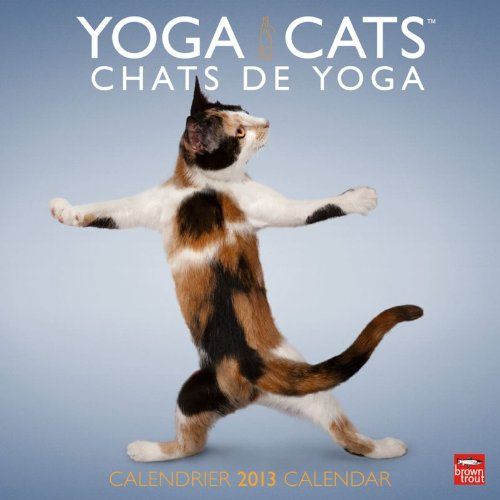 Yoga Cats/Chats De Yoga 2013 Calendar