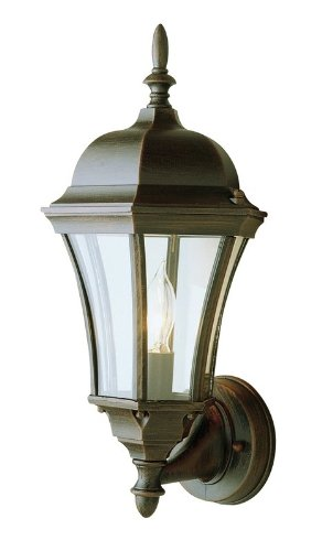Trans Globe Lighting 4502 BC 1-Light Coach Lantern, Black Copper