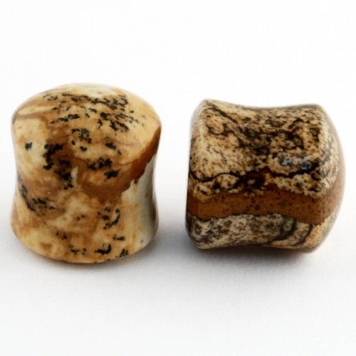 Pair of Picture Jasper Stone Double Flared Domed Plugs: 5/8