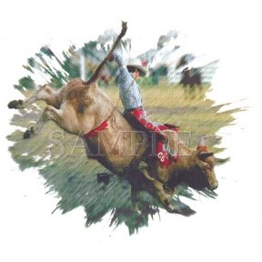 Buy Youth Sweatshirt : The Ride – Rodeo Bull Riding