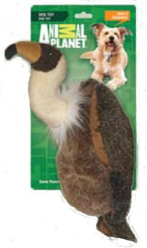 Animal Planet Dog Toy, Vulture, Large