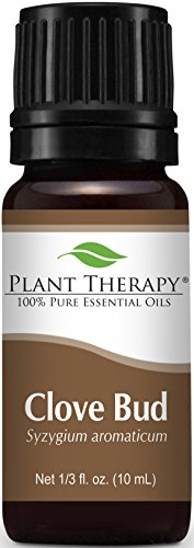 Plant Therapy Clove Bud Essential Oil. 100% Pure, Undiluted, Therapeutic Grade. 10 ml (1/3 oz).