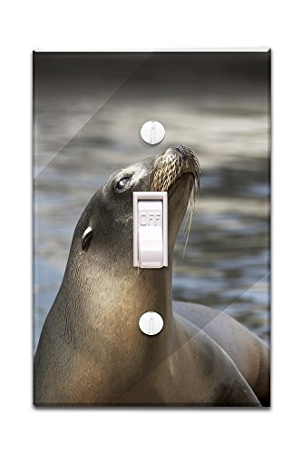 Harbor Seal (Light Switchplate Cover)