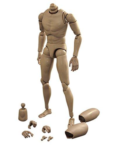 Narrow Shoulder 1:6 Scale Action Figure Male Muscular Body Toys for TTM18 TTM19