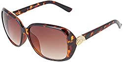 Omnesta Men's Wayfarer Sunglasses (Brown) (PD029)