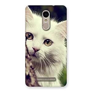 Hiding Cat Multicolor Back Case Cover for Xiaomi Redmi Note 3
