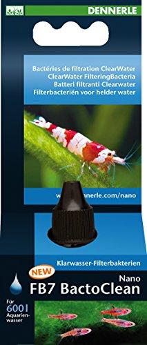 dennerle-traitement-de-leau-pour-aquariophilie-nano-fb7-bactoclean-15-ml