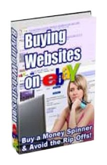 Buying Websites on eBay -