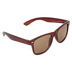 NB Brown Good look Wayfarer Sunglasses