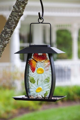 Cheap Evergreen Bird Seed Feeder – DELIGHTFUL DAISIES & Butterfly – Solar Powered LED Light – Metal & Glass – Seed Feeder – 2BF204 (2BF204)