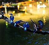 Birds Cosmos—中野晴文写真集