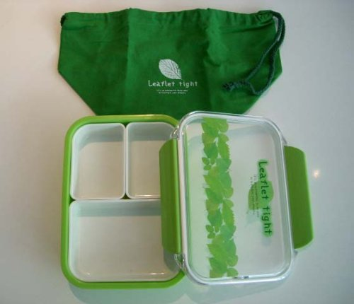 Takeya Bento Lunch Box With A Green Bag, 500Ml