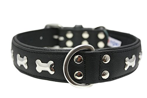 "Leather ""Bones"" Dog Collar, Padded, Double-Ply,  Riveted Settings, 24"" x 1.25"", Black, 100% Genuine Leather (Rotterdam Bones) Neck Size: 17.5"" - 22"""