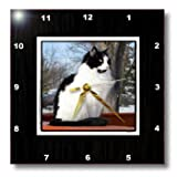 dpp_180849_2 Beverly Turner Cat Photography - Beautiful Black and White Kitty Cat on Patio Rail on a Winters Day - Wall Clocks - 13x13 Wall Clock