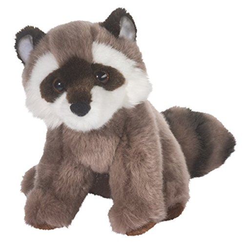 Ranger Raccoon - 1