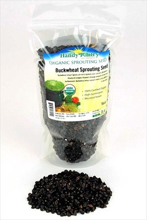Organic Sprouting Seeds Buckwheat 1 Pound - Whole Buck Wheat - Shell On - Sprouting, Buckwheat Greens, Food Storage, More.
