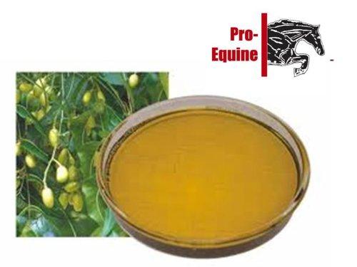 huile-vegetale-de-neem-pour-chevaux-10-kg-sweet-itch-mudfever-rainscald-talons-poux-des-demangeaison