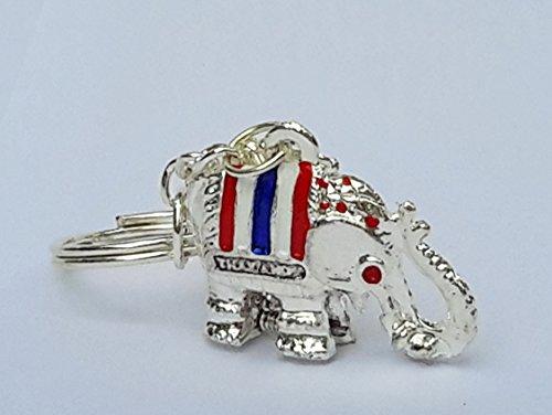 Super Lucky Elephant Key Chain Secret Hidden Pill Box Locket Silver Color (Lucky Gem Casino compare prices)
