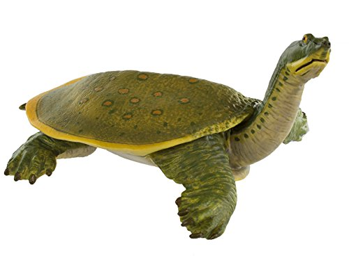 Safari Ltd Incredible Creatures - Soft Shell Turtle - Realistic Hand Painted Toy Figurine Model - Quality Construction from Safe and BPA Free Materials - For Ages 3 and Up - Large - 1