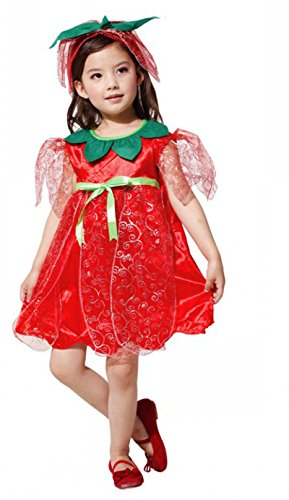Treasure-box Cute Girls Flower Fairy Elf Costume