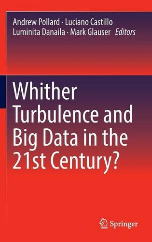 whither-turbulence-and-big-data-in-the-21st-century