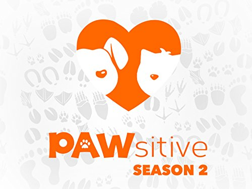 Pawsitive - Season 2