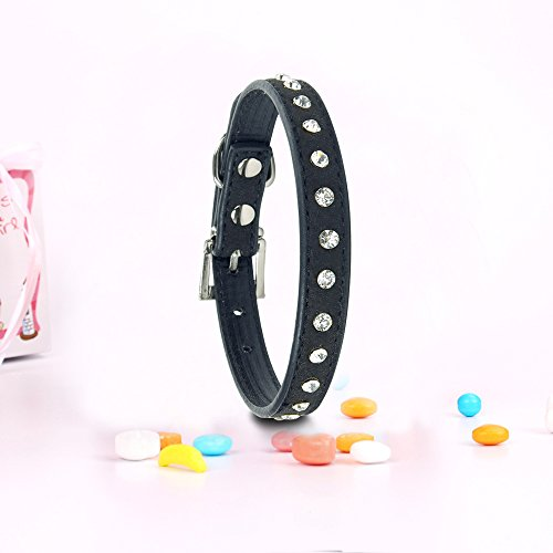 Pets-House-Dog-Collars-for-Small-Dogs-Prime-Medium-Black