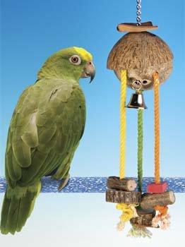 Cheap Bird Perch Penn Plax – LRG CARIBBEAN HIDE-A-TREAT (BACH3)