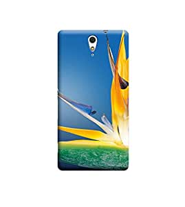 EPICCASE Premium Printed Back Case Cover With Full protection For Sony Xperia C5 (Designer Case)