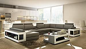 Amazon.com - VIG Furniture VGEV5080 Divani Casa 5080 Grey and White