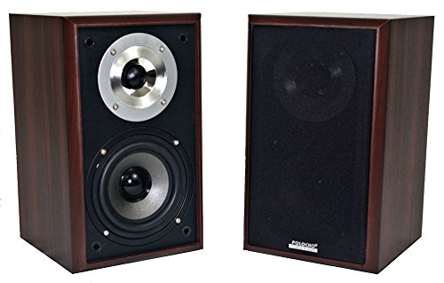 Passive Bass Reflex 2 Way Desktop/Bookshelf Speaker Pair