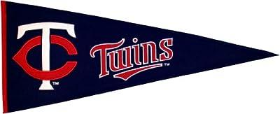 MLB Minnesota Twins Medium Pennant