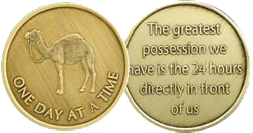 Camel One Day at A Time (24 Hr) - Bronze AA (Alcoholics Anonymous) -ACA-AL-ANON - Sober / Sobriety / Affirmation / Desire / Medallion / Coin / Chip - 1