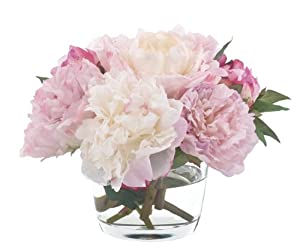 FAB Flowers Light Pink and Cream Peonies in Low Round Vase, Perfect, 12 Inches Length x 9 Inches High