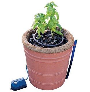 Amazon Com Cocogrower Hydroponic System 6 Gallon