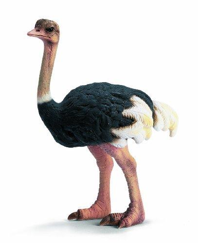 Ostrich Replica <br>Schleich