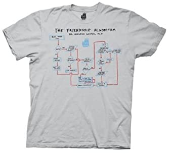 THE BIG BANG THEORY -- THE FRIENDSHIP ALGORITHM -- MENS TEE (Platinum/Small)