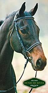 Henri De Rivel Dressage Bridle Cob Black