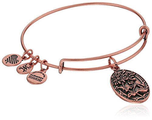 Alex-and-Ani-Because-I-love-you-Sister-II-Expandable-Bangle-Bracelet