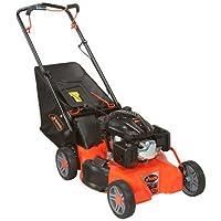 Ariens Company 911173 Push Mower, 21&quo...