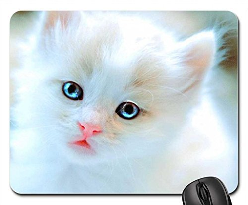 Bright eyes for Carmen Mouse Pad, Mousepad (Cats Mouse Pad)