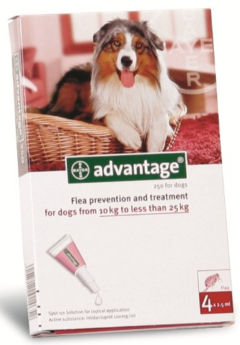 Advantage-For-Dogs-10-25kg-6-Pack