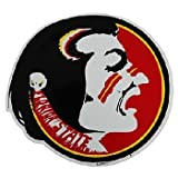 NCAA Florida State Seminoles Car Magnet Oval (Large, 2 Pack) at Amazon.com